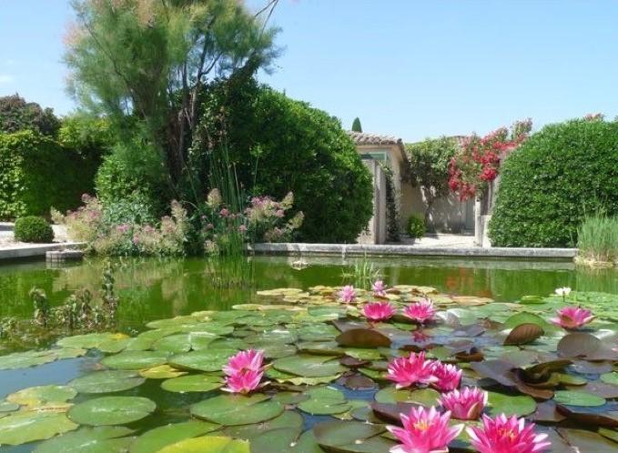 Gite piscine en provence saint remy de provence les for Gite provence piscine